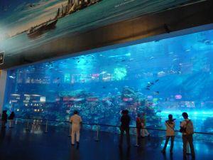 Aquarium Dubai Mall